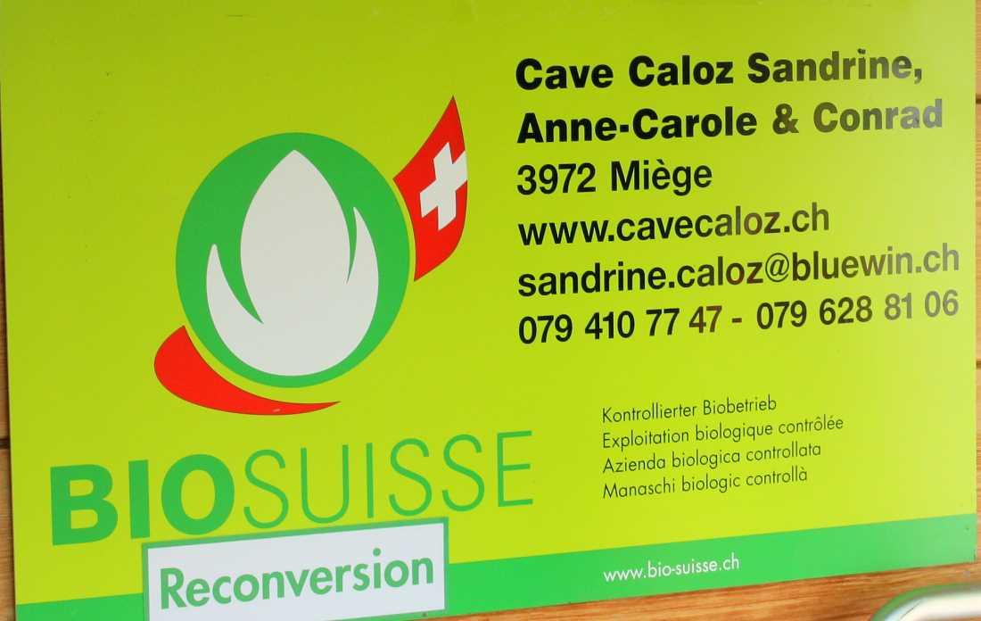 caloz2
